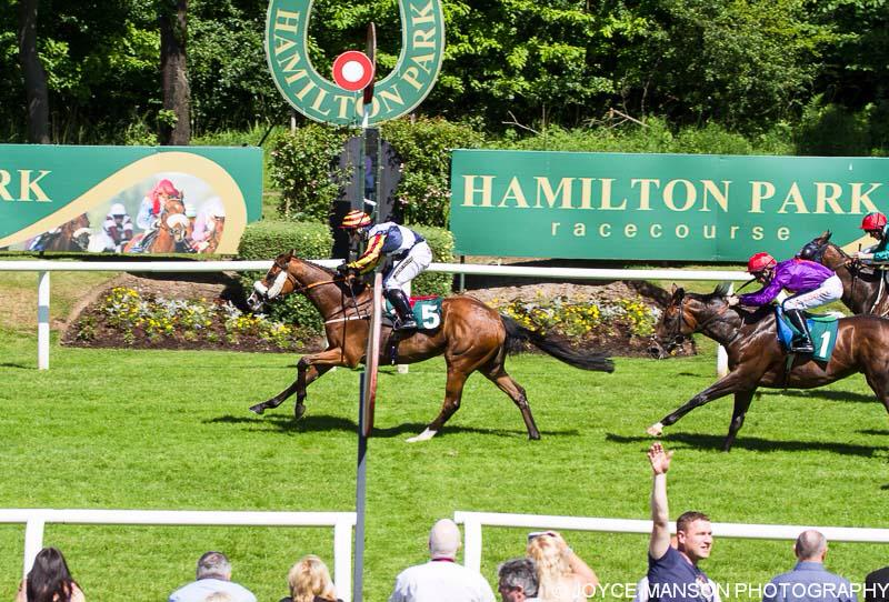 The Musketeer break his maiden at Hamilton