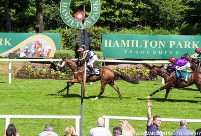 The Musketeer break his maiden at Hamilton