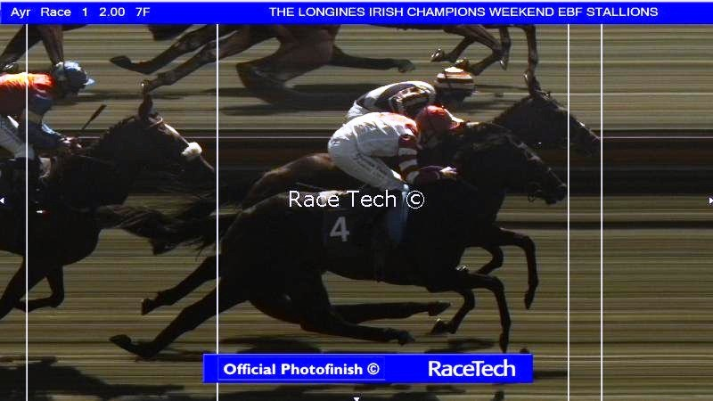 Wee Jim wins in a photo finish at Ayr