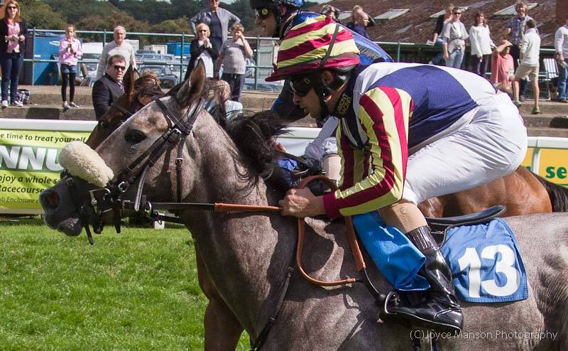 Zebelini wins at Ripon on her debut