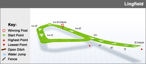 lingfield racecourse