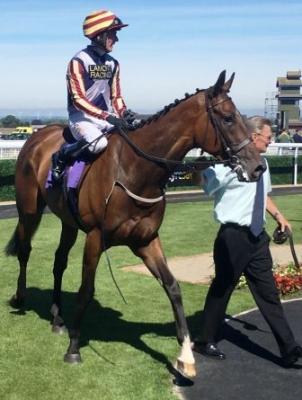 Maifalki wins at Beverley