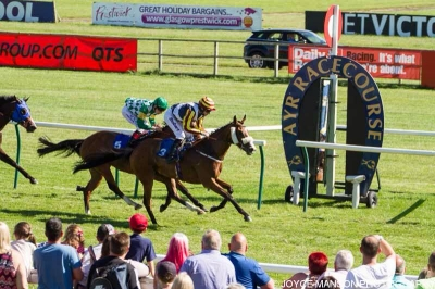 The Musketeer puts them to the sword at Ayr.
