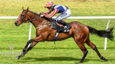 Wee Jim destroys the field at Musselburgh